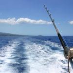 Pesca in barca